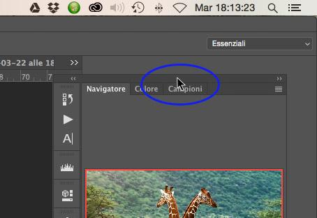 Disancorare gruppo di palette Photoshop