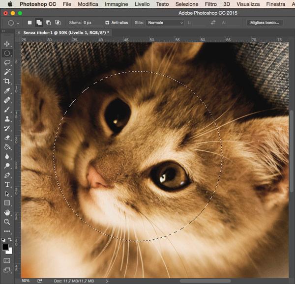 Esempio selezione ellittica Photoshop