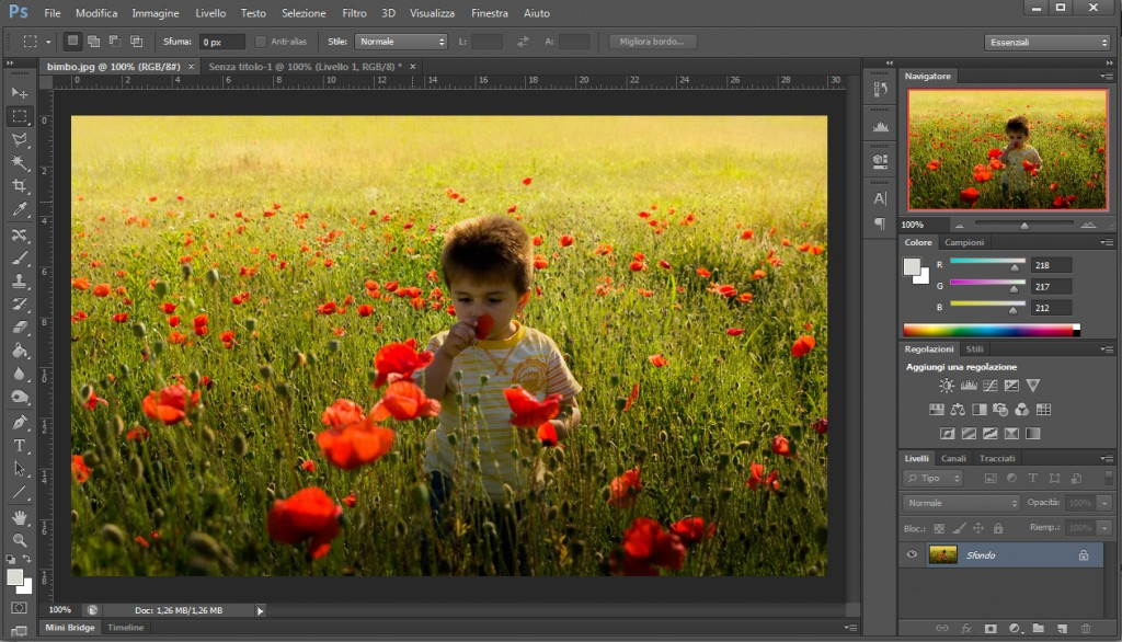 Esempio photoshop cs6