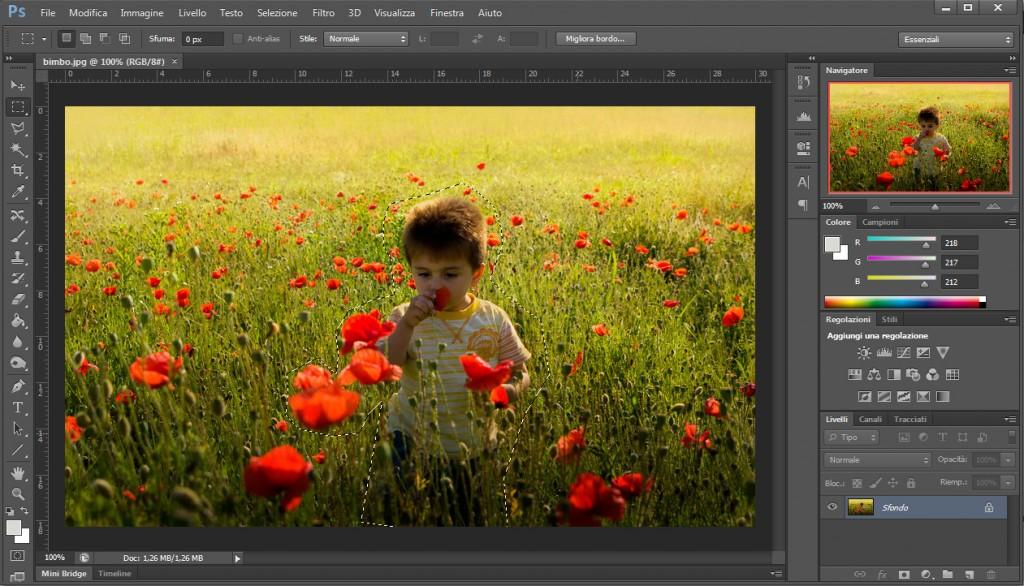 Esempio di selezione photoshop cs6
