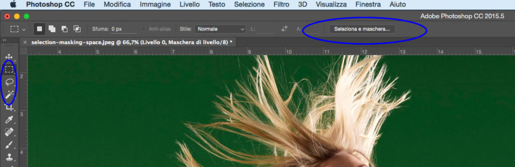 Nuova sezione Seleziona e Maschera di Photoshop